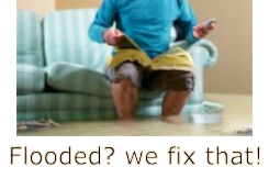 carpet cleaning tampa fl